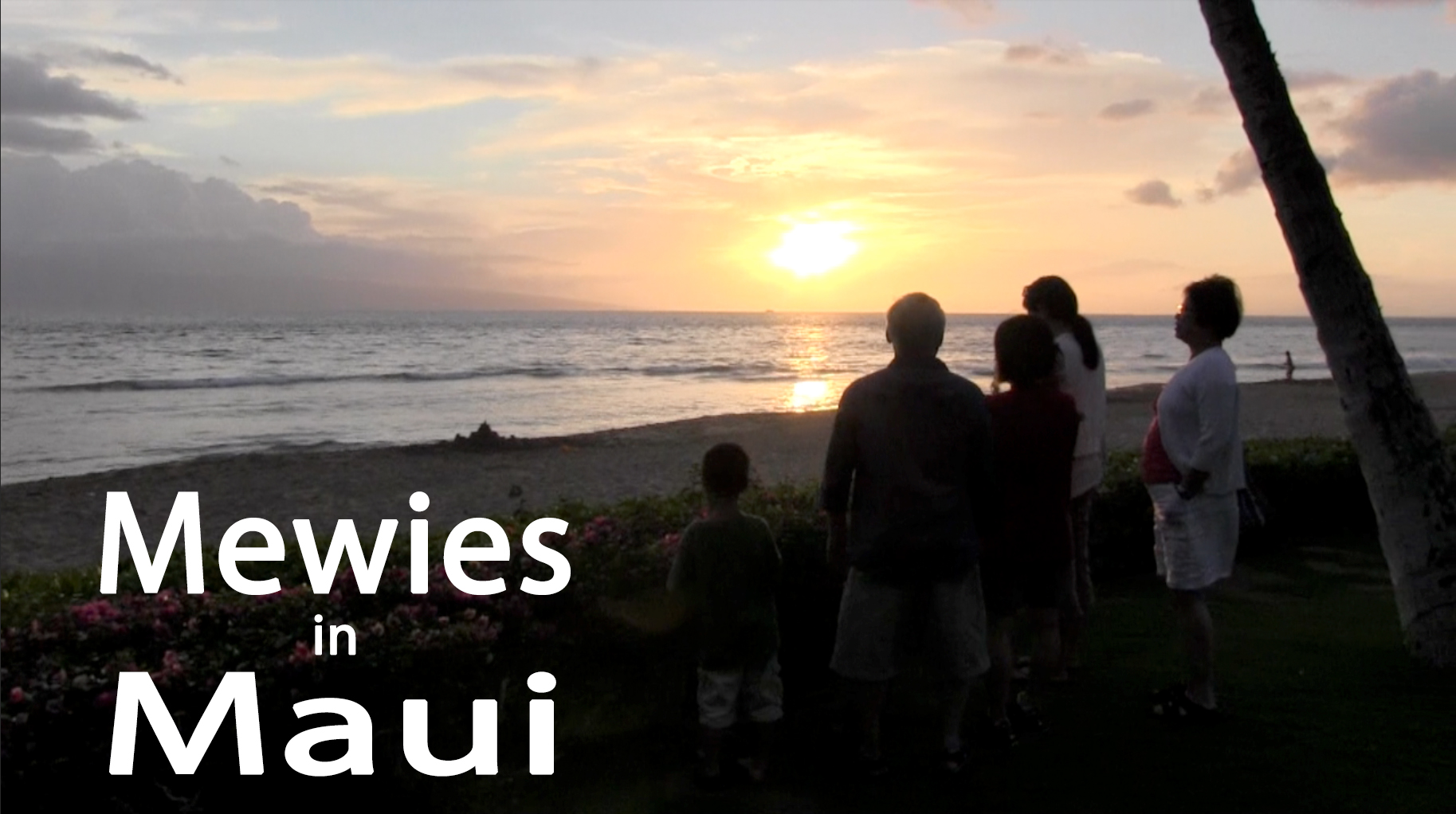 Mewies in Maui Video