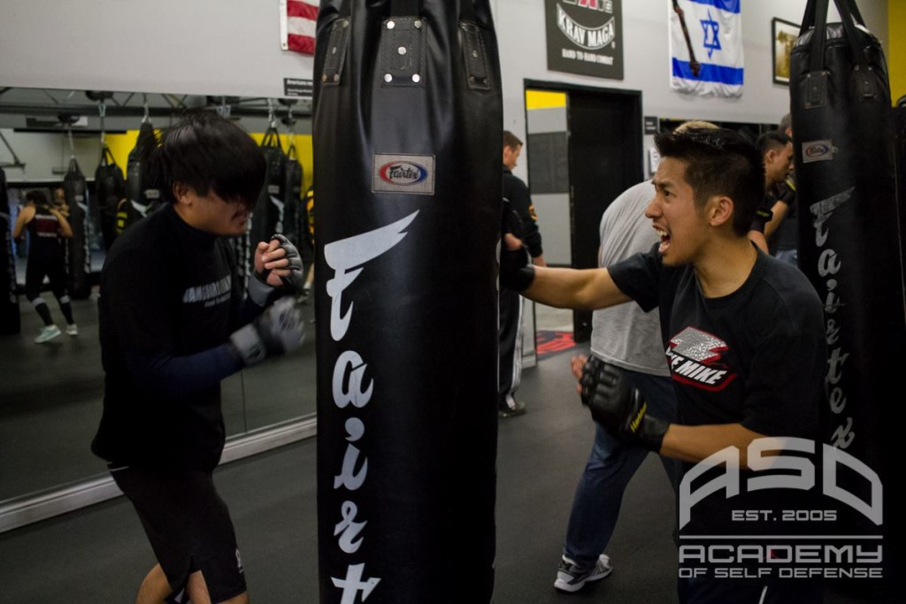 Perfect example of something that requires improvement: when punching with the right, my left hand should be higher to block a potential attack. Oops!